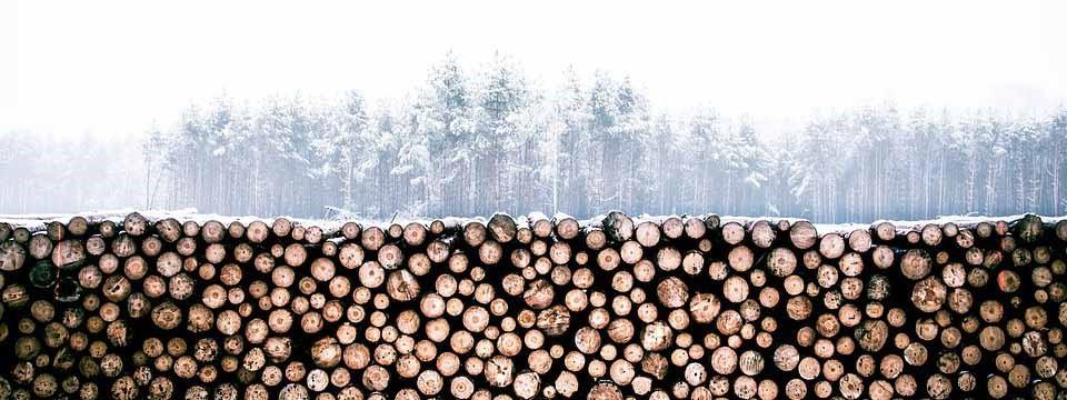 legna a ciocchi